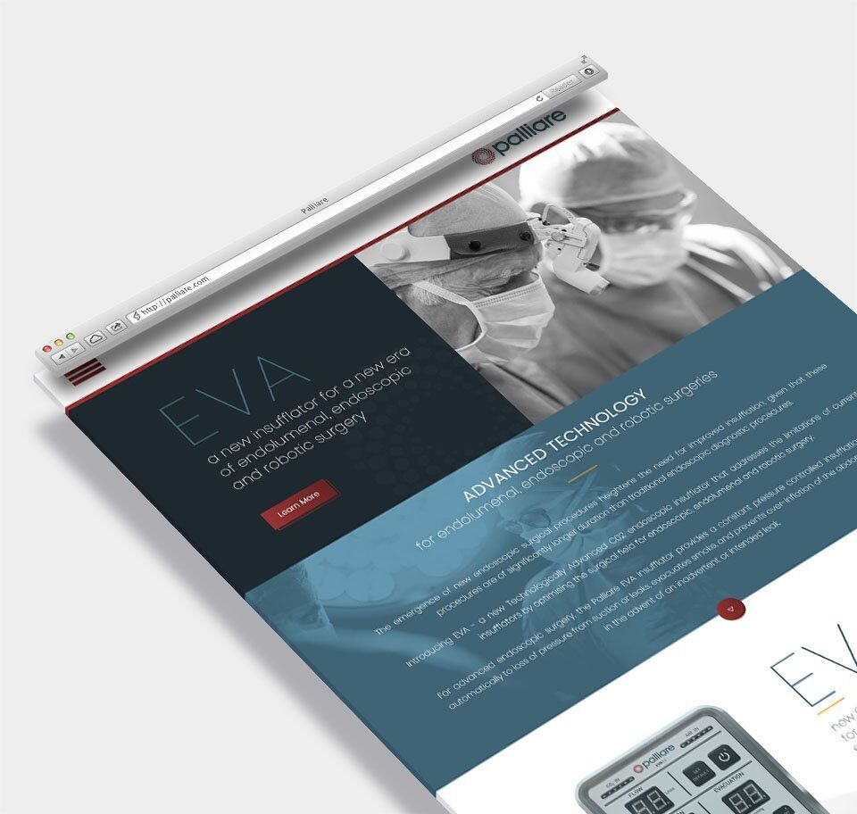 Modern landing page design for Palliare